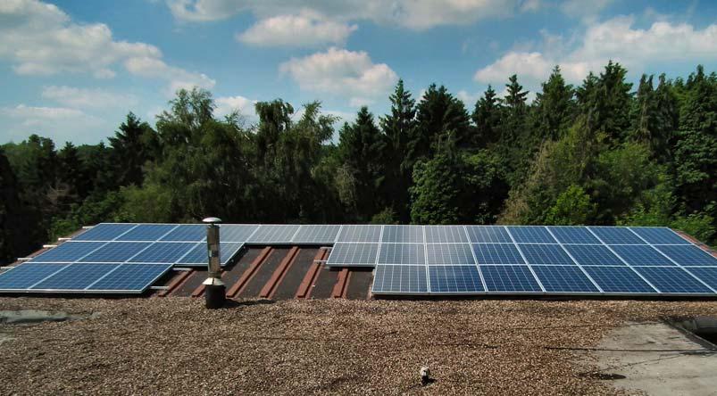 Forest Solar Panels